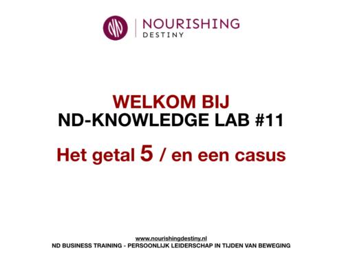 KNOWLEDGE LAB 11#