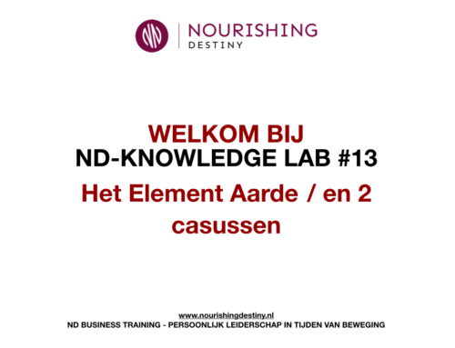 KNOWLEDGE LAB 13#