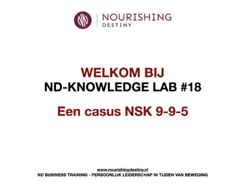 KNOWLEDGE LAB 18#